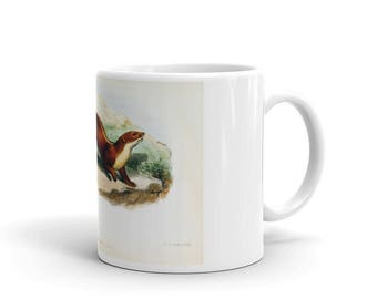 Coffee Mug - Ceramic - Stripe-backed Weasel Coffee Mug
