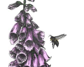 A4 Art print: 'Busy Bee'