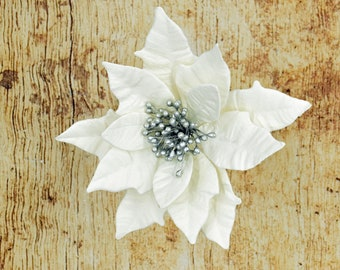 Pearl and Silver Poinsettia