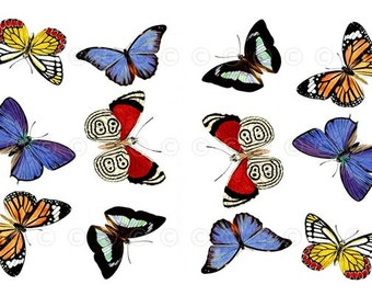 Butterfly Water-Slide Decals, Butterfly Wedding and Party Decals, Decorate Flame-less Candles, Soap, Glass, Home Decor, Furniture etc...