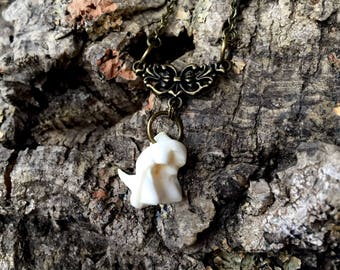 Coyote Tooth Necklace - Taxidermy - Bone - Oddity - Curiosity