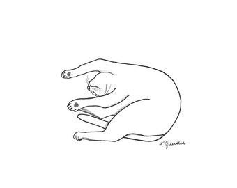 Yogi 9: What Spine?