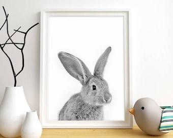 Rabbit Print, Rabbit Wall Art, Nursery Wall Art, Bunny Print, Animal Wall Art, Black & White Photo, Bunny Art, Instant Digital Download,