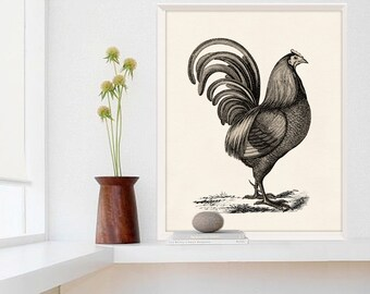 Large French Rooster Poster, Restaurant Decor, Rooster Kitchen Decor
