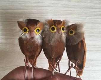 vintage set of brown owls / real feathers / miniature terrarium owl / bird