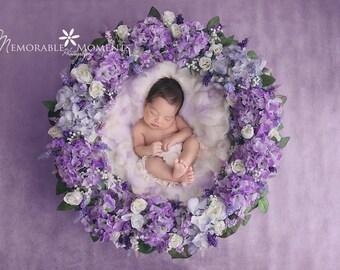 purple hydrangea flower wreath newborn digital back ground