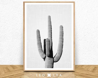Cactus Print, Cactus Black and White Photography, Cactus Wall Art, Large Poster, Printable Download, Southwestern Decor, Modern Minimalist