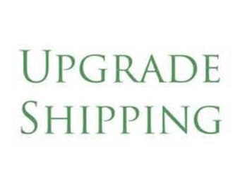 UPGRADE SHIPPING to U.S. (priority mail) or CANADA (expedited)