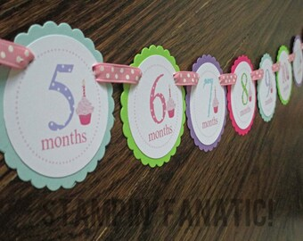 Sweet Little Cupcake Girl Banner: Just Born/0-12month Cupcake First Birthday Photo Picture Banner. First Birthday Banner. First Year Banner.