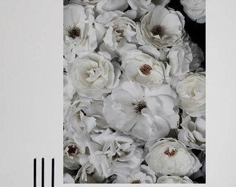 Roses - Fine Art digital print