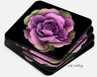 Purple Ornamental Kale Fine Art Coaster Set | Hostess Gift