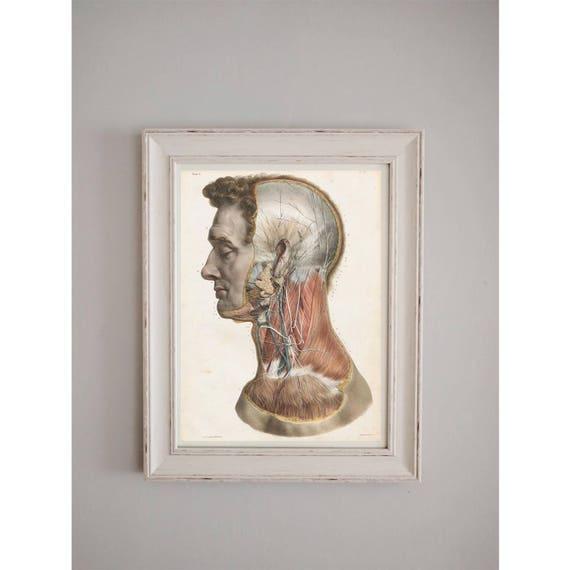 Vintage Human Anatomy Poster Medical Journal Wall Art