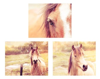 horse photography set pony photography 8x10 8x12 set of 3 Fine art photography nature photography equine golden sepia brown horse wall art