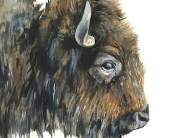 Buffalo watercolor, Buffalo, Buffalo watercolor art, Buffalo art, Buffalo painting, Buffalo print, Buffalo nursery art