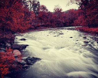 River Print