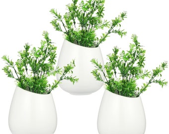 Wall Bubble Terrarium Wall Plant Planter Vase Wall