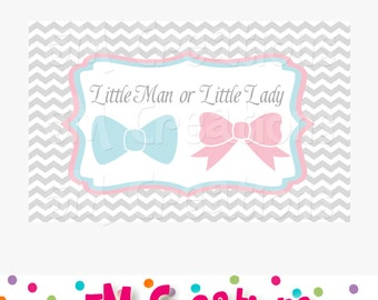 Gender Reveal Party Sign - Baby Shower Decorations - Little Man Little Lady Printable Backdrop - Poster-  INSTANT DOWNLOAD Pdf