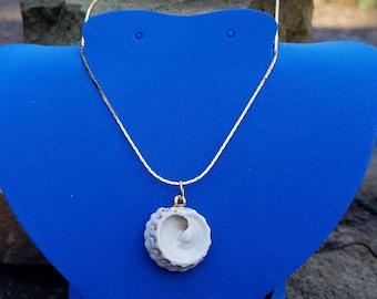Beautiful OOAK seashell necklace!!