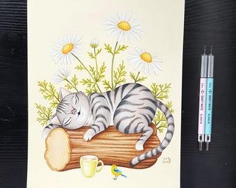 Grey Cat study by Grelin Machin - original drawing on paper