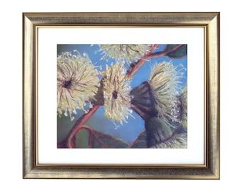 Australian Wattle Print, Australian Flowers Print, Wattle Illustration, Wattle Flowers Print, Australian Artist, Floral Decor, Floral Art