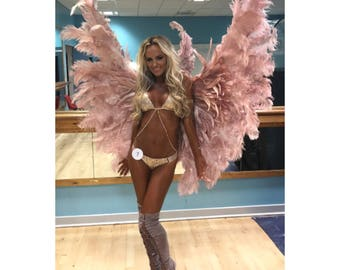 Victoria's Secret style rose gold themewear wings!