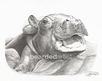 """8.5x11"""" OR 11x17"""" Print of Fiona the Hippo from the Cincinnati Zoo"""