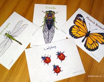 Friendly Bug Postcards (set of 4)