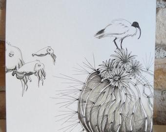 """Dessin """"le cactus ou le voyage avec les sèches"""" noir et blanc"""