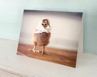 Baby Animal Card Chicken in A White Kerchief Chicks in Hats Photography #23