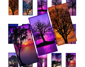 Tree Silhouette on Sunset Background, 1x2inch Domino Image, Digital Collage, Instant Download, Printable Graphics, Digital Image, 073