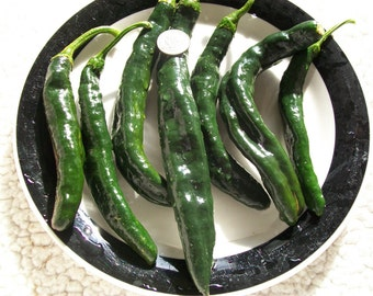 Hot Pepper- Pasilla Bajio-  78 day - 550 to  1000 shu- mildly hot-25 seeds
