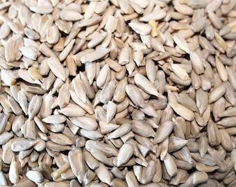 Activated Sunflower Kernels 90g Pouch - Raw, organic