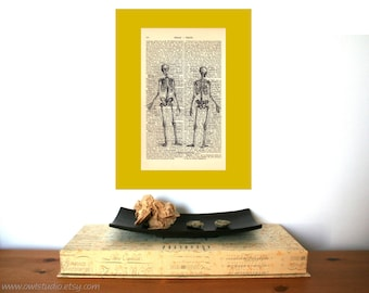 Medical Student Gift | Human Skeleton | Graduation Gift | Wall Decor | Shabby Chic | Anatomy | Science | Steampunk | Rustic Home Decor