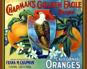 Golden Eagle Covina  Refrigerator Magnet