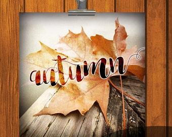 Autumn Print / 12x12 / 6x6 / 4x4 / print / Photo Print / orange / yellow / Thanksgiving / Digital Download / leaf / leaves / autumn