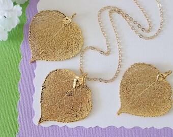 Gold Aspen Leaf Necklace, Real Leaf Necklace, Aspen Leaf, Gold Leaf Necklace, Long Leaf, Leaf Pendant LC216