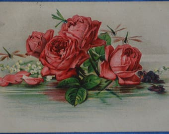 Art Pink Roses Still Life Mailed Early 1900s