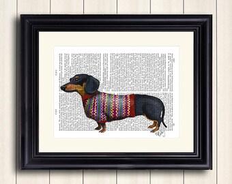 Dachshund with Woolly Sweater - Dachshund print, doxie print Dachshund illustration, Dachshund picture doxie decor doxie sweater doxie lover