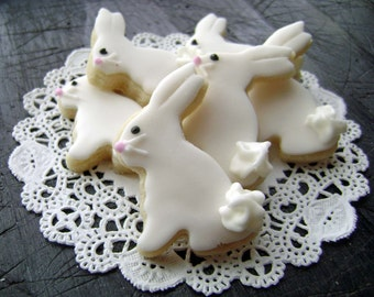 Baby Easter Bunny Sugar Cookies - Mini Bites - Woodland Cookies