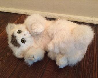 Faux Taxidermy Cat/Life Like Cat/Soft Kitten/Fake Cat