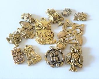 set of 14 owls