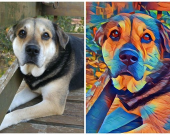 Personalized Abstract Pet Matted Picture