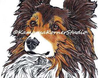 Sassy Sheltie Shetland Sheepdog Coloring Page