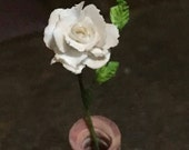 OOAK White rose in a pink...