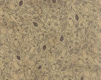 Black Tie Affair Floral Fig Study Tan 30422 13 by Basic Grey for Moda