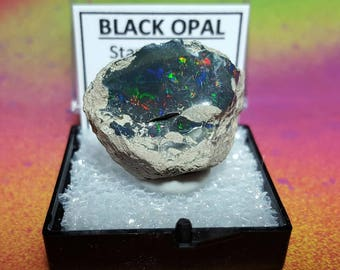 Sale BLACK OPAL Natural Rainbow Flash Desert Black Opal Gemstone Collector Mineral Specimen In Perky Display Box From Ethiopia Sale