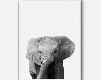Nursery Animal Wall Art, Elephant Print, Baby Elephant Photo, Safari African Animal, Black White Animal, Modern Nursery Decor, Printable Art