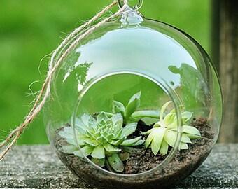 Clear Hanging Glass Flowers Plant Vase Terrarium Bulb 8cm
