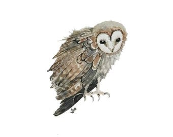 Owl blank greeting card reproduction of my original watercolor ink illustration drawing of barn owl in browns and natural colors