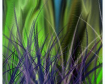 Grassy Knoll B #25/30